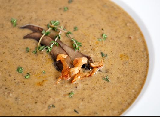 Intense creamy mushroom soup | Tastetickler